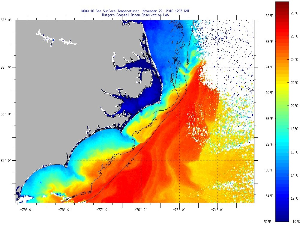 Sea Surface Temperatures for NC