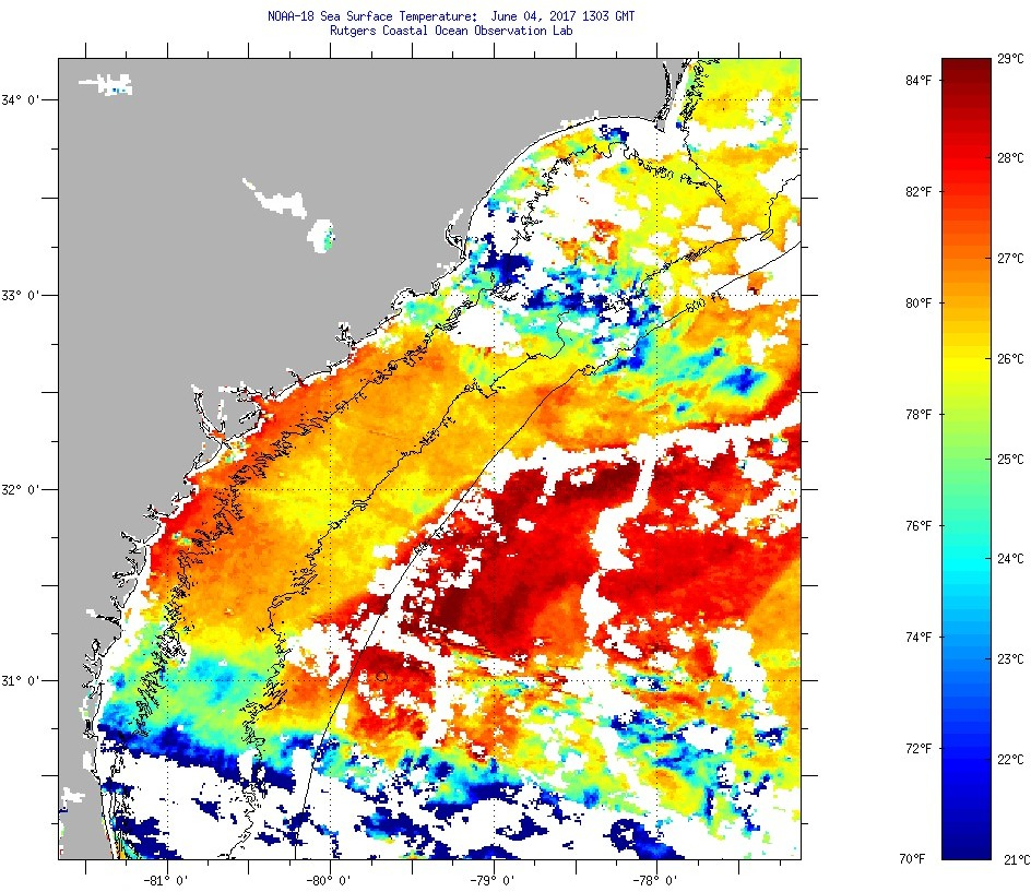 Sea Surface Temperatures for SC