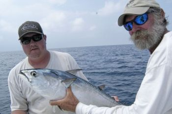 Fall Fishing For False Albacore