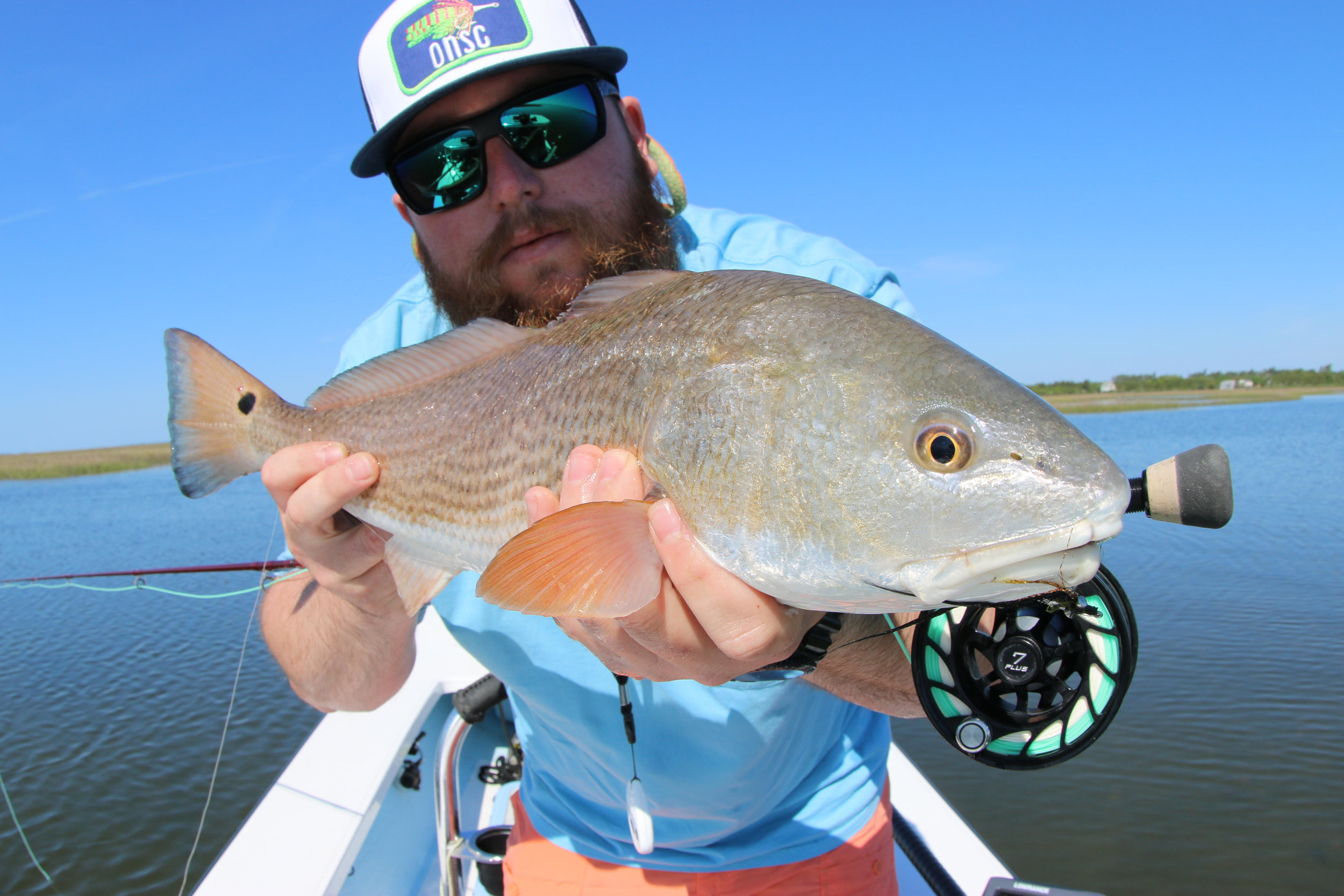 "Redfish North Carolina Decal 4/"" 5/"" 6/"" Fishing Bait /& Tackle Salt Water Charter"