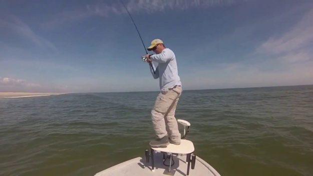 Wrightsville Beach Schooling Redfish…….Video