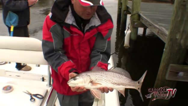 Wintertime Creek Fishing….Video