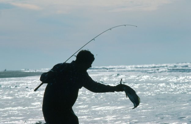 North Carolina's Fishing Decline……No Corrective Movement Seen By State Leaders Only More Concerns