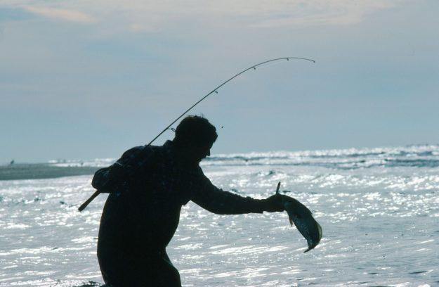 Decline of the North Carolina Coastal Fishing Resource…Conclusions