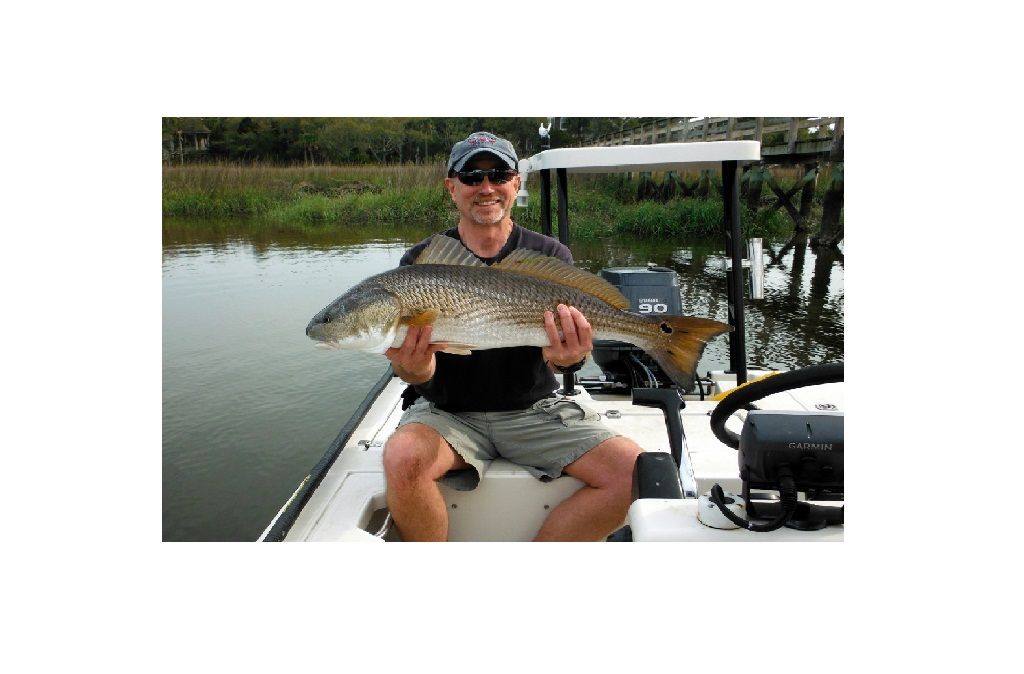 Warmer weather means improved fishing in south carolina for South carolina fishing license