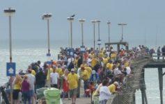 Fishing reports coastal carolina fisherman homepage for Kure beach fishing report