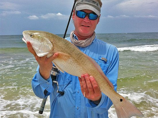 Fishing reports coastal carolina fisherman for Nj shore fishing report