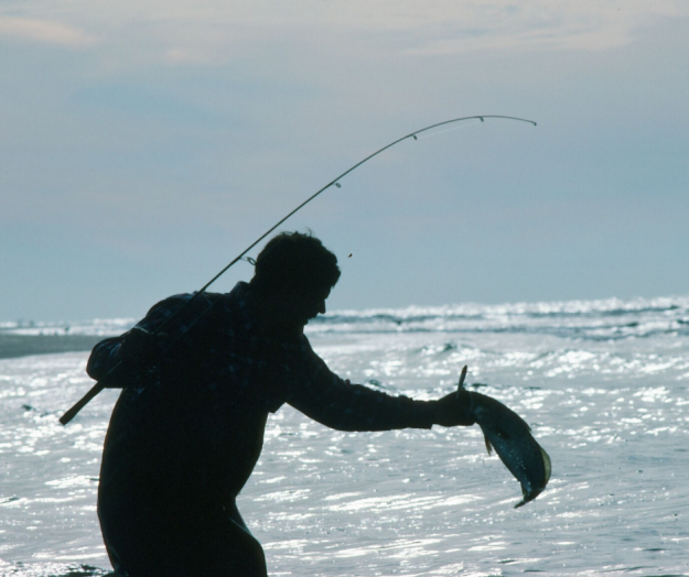 Decline of NC Fishing….New Amendment Just a Shuffle of Numbers