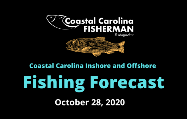 Fishing Forecast For October 28, 2020