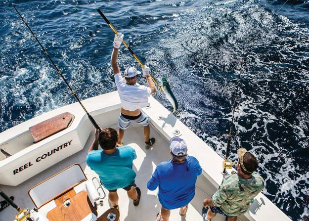 Offshore Fishing Accessories
