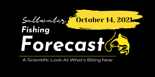 Fishing Forecast For October 14, 2021